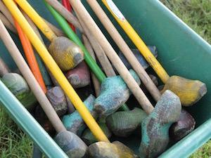 Activiteiten Boerengolf of pitch en put in Drenthe