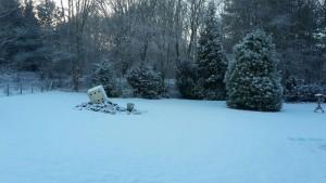 Winter in Drenthe. In de privé tuin ligt sneeuw.