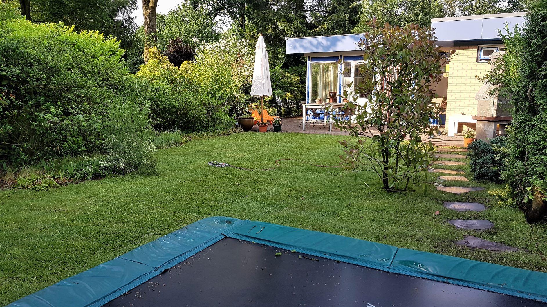 blauwe-boshuis-met-trampoline