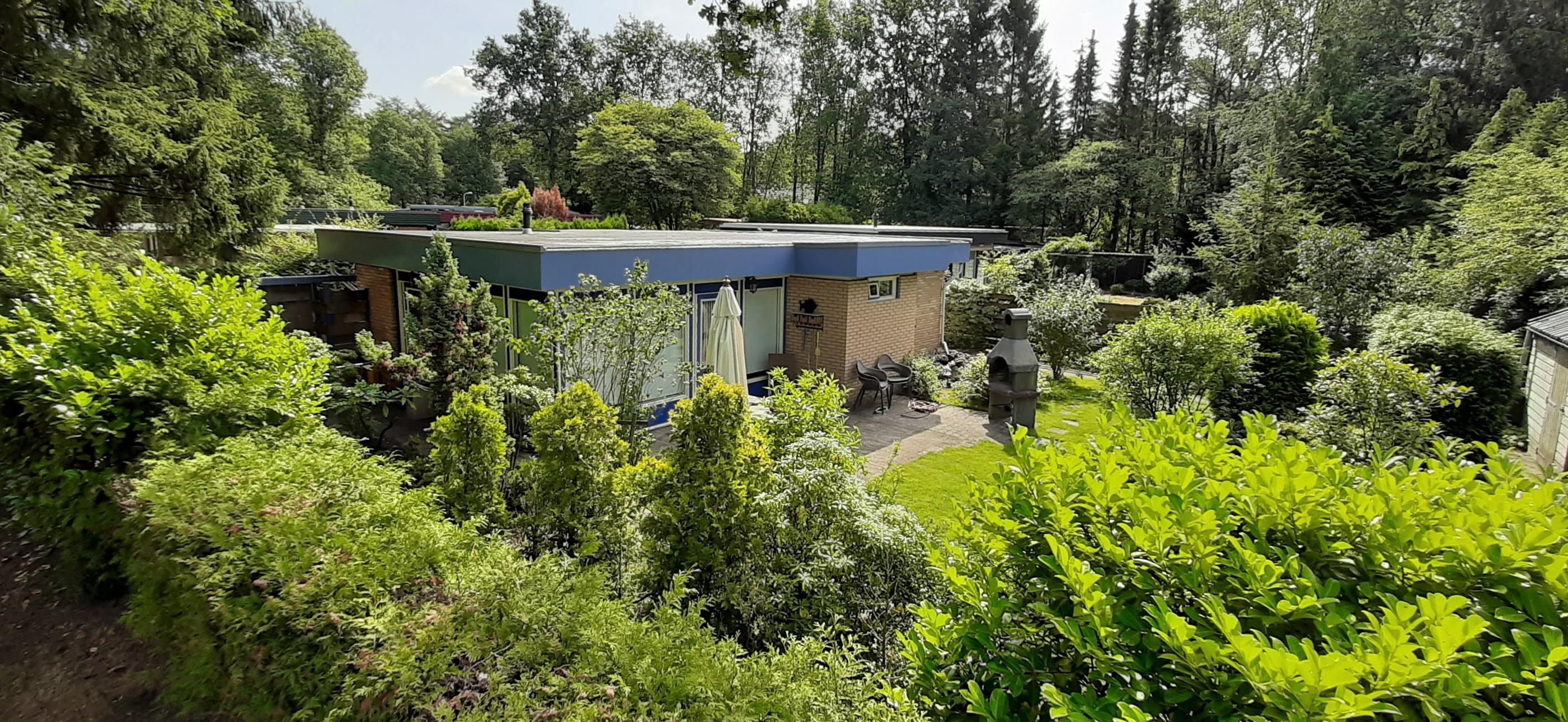 blauwe-boshuis-van-boven